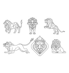 Lion line sign and symbol vector