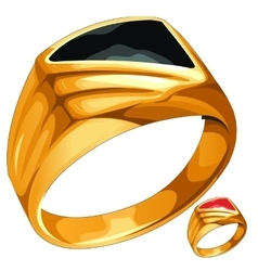 Mens yellow gold ring with expensive stone vector