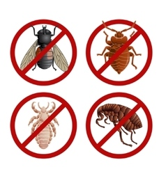 set disable signs with pest insects vector image