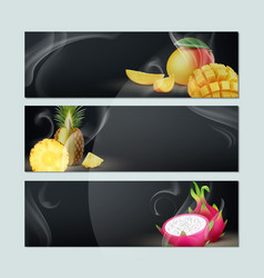 set of fruit banners vector image