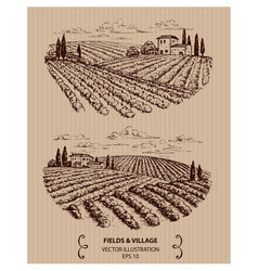Winery landscape vector