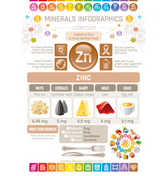 Zinc mineral supplement rich food icons healthy vector