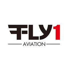 Flying aviation logo vector