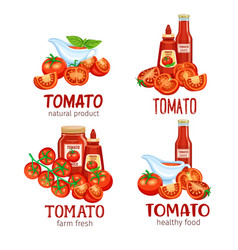 Red tomatoes vector