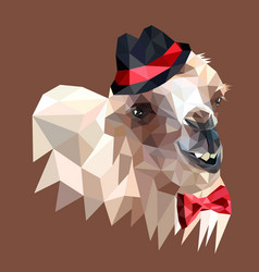 stylized camel hipster in a red bow tie and a hat vector image
