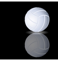 volleyball on a smooth surface vector image