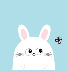White bunny rabbit looking at butterfly funny vector