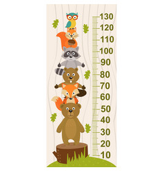 growth measure with forest animal vector image vector image