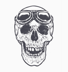 skull racer art vector image