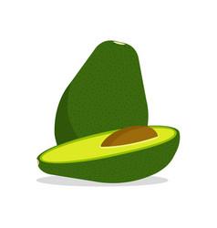 avocado fruit icon vector image