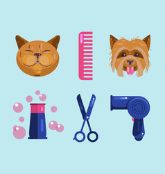 Cats and dogs grooming pet grooming icons vector