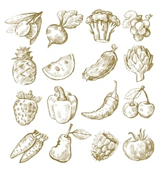 Hand draw fruit and vegetable vector