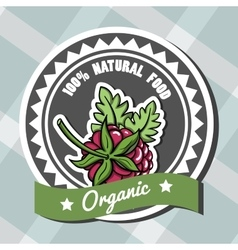 Natural Food 6 vector image