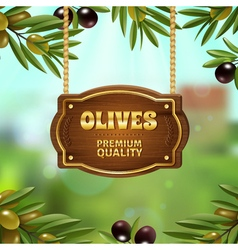 Premium Quality Olives Background vector image