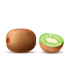 realistic ripe kiwi sweet tropical fruits vector image