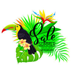 summer sale bright composition with toucan vector image vector image