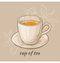 mug of tea vector image
