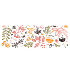 autumn botanical set collection hand sketched vector image