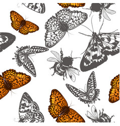 butterfly pattern for design vector image