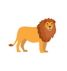 Flat lion isolated on white background vector