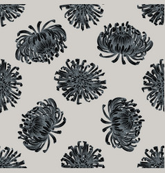 seamless pattern with hand drawn stylized aster vector image