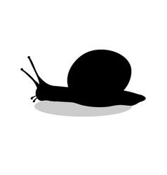 Snail mollusk shell black silhouette animal vector