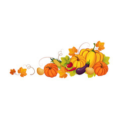 thanksgiving banner with autumn vegetables and vector image