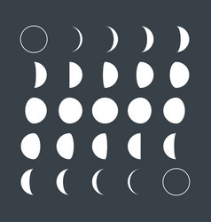 Lunar phases vector