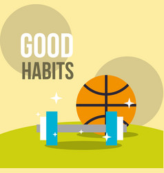 basketball ball and dumbbell weight good habits vector image