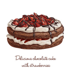 Delicious chocolate cake with strawberries vector