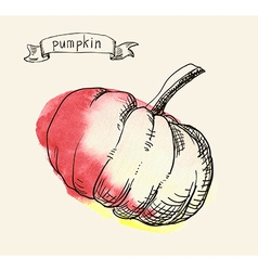 Pumpkin sketch vector