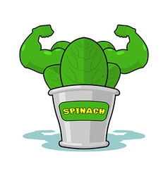 Spinach strong and powerful Muscular arms of banks vector image