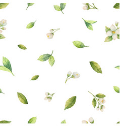 Watercolor seamless pattern with jasmine vector