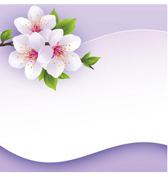 Greeting or invitation card with branch of sakura vector image vector image