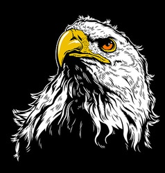 White Eagle Head vector image vector image