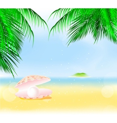 Palm Islands Pearl vector image vector image