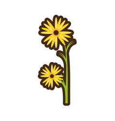 Cartoon marigold flower decorative plant vector