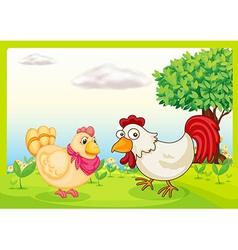 chickens in a field vector image