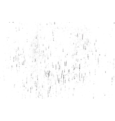 DSC 0153we vector