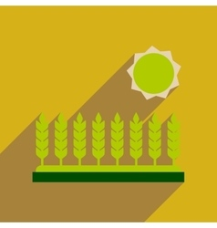 Flat web icon with long shadow Wheat field vector