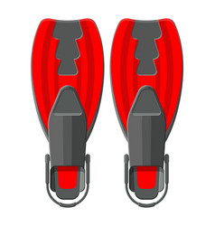 Swimming flippers diving equipment vector
