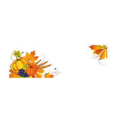 thanksgiving banner with space for text autumn vector image