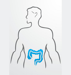 Intestines and human body - vector image vector image