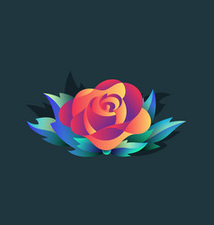 isolated rose with leaves vector image