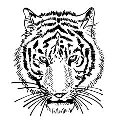 Artwork of tiger face portrait head silhouette vector