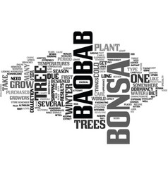 Baobab bonsai text word cloud concept vector