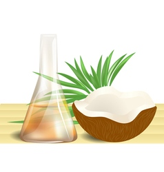coconut oil on table vector image