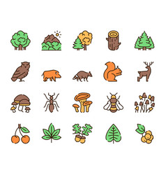 Color linear icon set forest objects vector