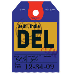 delhi airline tag vector image