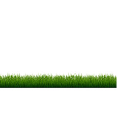 Grass border set isolated white background vector